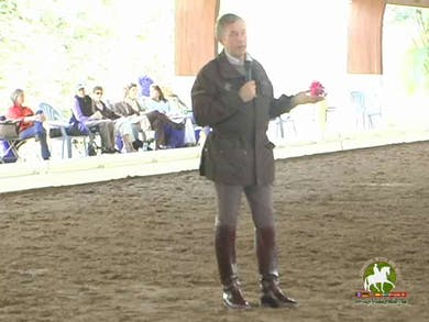 Shawna Harding, part 3, day 1 by Dressage Today Online