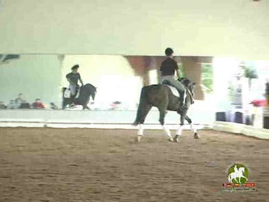 Luis Denizard, part 1, day 1 by Dressage Today Online
