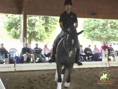 Luis Denizard, part 2, day 1 by Dressage Today Online