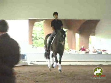 Luis Denizard, part 3, day 1 by Dressage Today Online