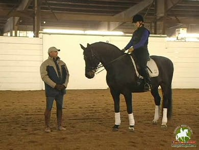 Warm up, focus on equitation, work on achieving proper bend, turn on the haunches by Dressage Today Online