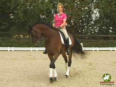 Katrin warm up and moves into working on improving the canter depart. She goes through all of the components she thinks about to achieve an improved depart. Next she discusses the horse hanging on the bit, and what she does to loosen him and lighten him. by Dressage Today Online
