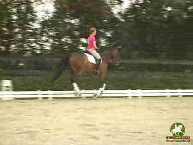 Katrin works alot of forward and back within the canter. You can nicely see the expectation at this point in a 5 yr. old's training. When the horse begins to rush in the walk she shows a couple of different ways to alleviate this. Next she moves into walk by Dressage Today Online