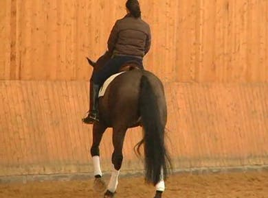 Discussion of Position and use of the seat. by Dressage Today Online