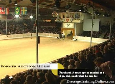 Friday night gala! Fun and entertainment, often using current auction horses as participants of the show, great to see to evaluate movement and temperment. by Dressage Today Online