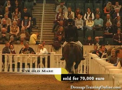 Auction Night. by Dressage Today Online