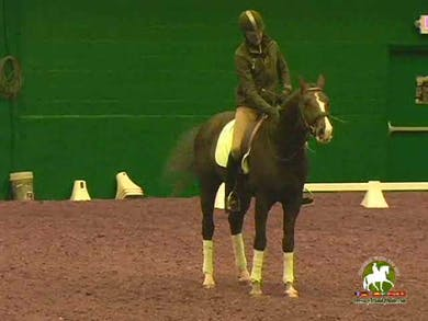 Day 2 by Dressage Today Online