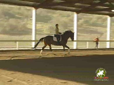 Here they work on getting a more uphill canter, with more impulsion and Catherine does a great job explaining it, the horse and rider succeed and it is very easy to see the difference.  by Dressage Today Online