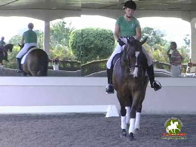 Half pass work is wonderful in showing a nice correction for a horse that wants to allow their shoulders to fall in. Edward allows emphasizes that for this duo that they need to do less shoulder in prior to the half pass in the set up.  by Dressage Today Online