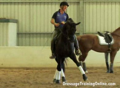 Keith works on getting as much expression in the half pass as possible. He then explains that the trot basically is piaffe. and that his horses trot is actually close to ground which promotes the collected work. by Dressage Today Online
