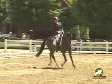 Cindi Wylie riding Folcano, 7.5, 7.8, 7.2, 7.2, 7.4   74.2% by Dressage Today Online
