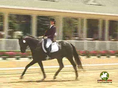 Ktie Wooten riding San City, 7.2, 7.5, 7.6, 7.2, 7.4   73.8% by Dressage Today Online