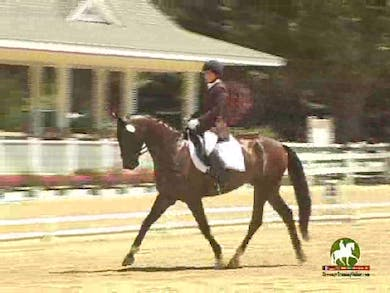 Lisa Postleb riding Federer, 7.4, 8.0, 7.5, 7.3, 7.6   75.6% by Dressage Today Online
