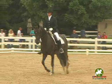 Michelle Folden riding Rania, 7.2, 7.8, 8.2, 7.5, 7.5   76.4% by Dressage Today Online