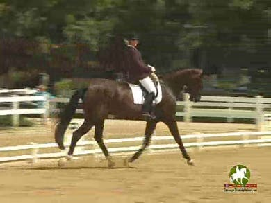 Ulla Parker riding Sabati, 7.8, 7.7, 7.9, 8.3, 8.2   79.8% by Dressage Today Online