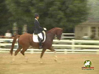Caroline Roffman riding Bon Chance, 9.0, 8.6, 8.5, 8.0, 8.8   85.8% by Dressage Today Online