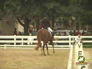 Karen Lipp riding Whitney, 8.5, 9.0, 7.5, 7.8, 8.3   82.2% by Dressage Today Online