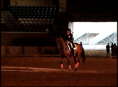Sue Jaccoma Freestyle on Waldamur by Dressage Today Online