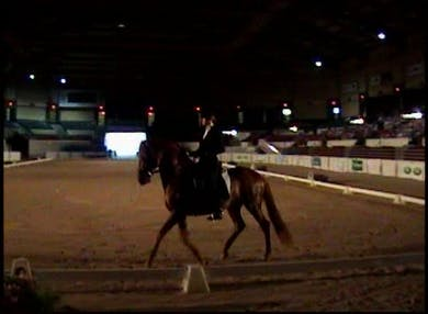 Felicitas Von Neuman Cossel Freestyle on Tonico do Top by Dressage Today Online