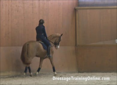 Catherine shows you leg position, heel position, explains how your hips and back should move and feel and gives a tip regarding how to best improve your seat. by Dressage Today Online