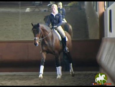 Collect, using seat and leg, not hand, not changing the length of the neck you just achieved in the canter with the length of stride and bend.  by Dressage Today Online
