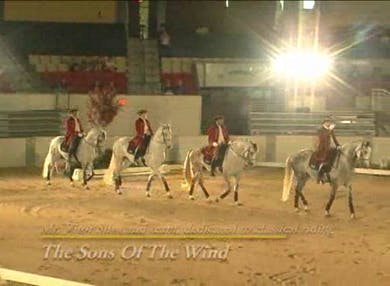 Quadrille - Sons of the Wind by Dressage Today Online