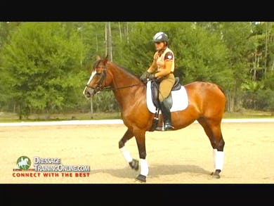 Nancy discusses and shows how to sit the canter. Emphasizing to let the canter go thru you, not thinking of influencing the canter with your seat. She explains the mechanics of the gait itself. by Dressage Today Online