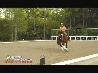 Nancy shows and discusses the collected canter, working canter and extended canter and explains how you use your aids to achieve all three.  by Dressage Today Online