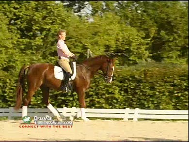 Walk pirouettes and the aids are discussed in detail. Medium trot worked on. Work on the halt on the centerline.  by Dressage Today Online