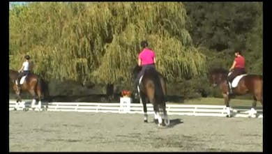 Fourth Level-Janet emphasizes that at this level the goal is to show that your horse can take more weight on the hind end and can spend time on the hind leg. by Dressage Today Online