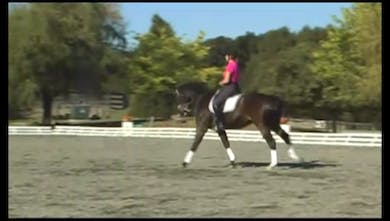 Fourth Level, Working Pirouettes- Janet emphasizes that larger better pirouettes are preferred and receive better scores than smaller and less accurate. by Dressage Today Online