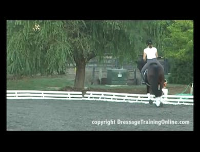 First Level Stretchy Circle and Connection by Dressage Today Online