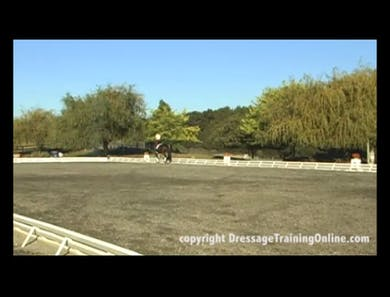 First Level 10M Circle to Leg Yield by Dressage Today Online