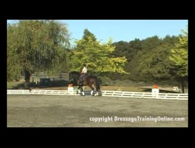 First Level Trot Lengthenings by Dressage Today Online