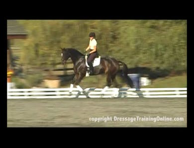 First Level Canter Lengthenings by Dressage Today Online