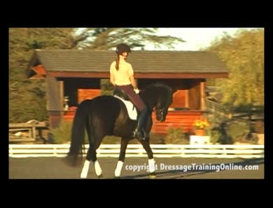First Level Canter Depart by Dressage Today Online