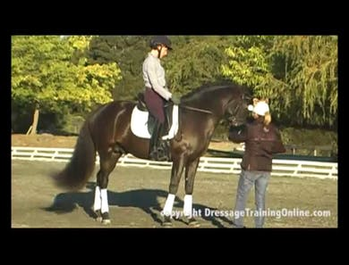 Continuation by Dressage Today Online