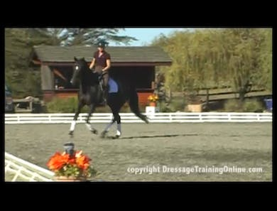 Second Level, Simple Changes,  by Dressage Today Online