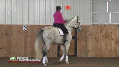This section stresses the connection from the hind leg forward and how to deal with the horse putting his head in the air when asked to move forward. by Dressage Today Online