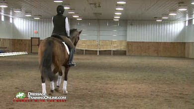 The shoulder in is worked on the centerline getting the feel of the correct amount of shoulder in and responsiveness to the leg bend aid. by Dressage Today Online