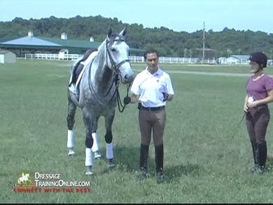 Vitor Silva - In-Hand Work, Part 1 by Dressage Today Online