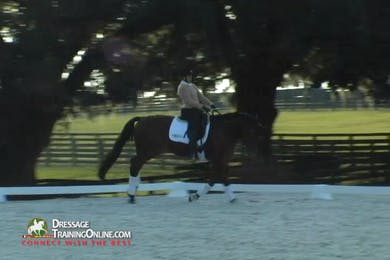 The pair continues their work in the canter, showing soft half-passes at the canter as well as counter-canter and they develop a better connection through these exercises by Dressage Today Online
