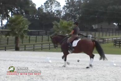 The lateral work continues with the trot half-pass and medium trot.  She is careful to ask and stay within the balance he is able to carry.  There is a good explanation of how progress with his training. by Dressage Today Online
