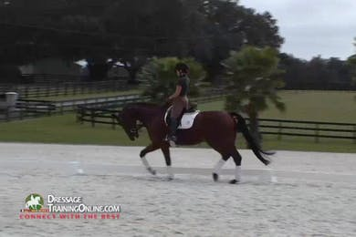Chrissa Hoffman rides Scrabble, a five year old gelding, giving a wonderful demonstration of the correct way to warm up and check that he is through.  There is an excellent discussion of the appropriate head and neck position for this horse. by Dressage Today Online
