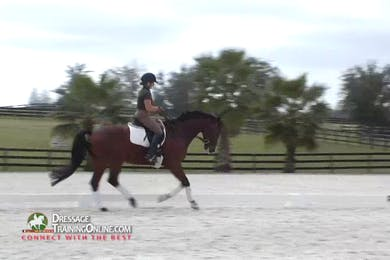 The warm up continues with the canter, checking that he is seeking the bit when stretching down, while still being able to bring him up to work. by Dressage Today Online