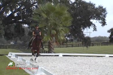 After a thorough warm up, Ms. Hoffman asks this talented young gelding to go to work.  She begins with the shoulder in and haunches in while keeping the impulsion and asking the gelding to move off her leg. by Dressage Today Online