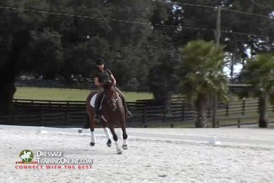 This session ends with lovely stretching at the trot because the work before was correct. Even though the work session is through, she doesn\'t allow him to rush at the walk.  This is a great tutorial on what work is appropriate for a five year old by Dressage Today Online