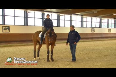 This five year old gelding is working on his lateral work by Dressage Today Online