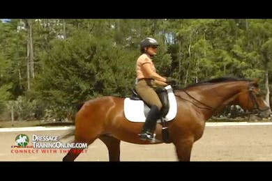 For a correct rein back, Ms. Later explains that you must first have a correct halt. by Dressage Today Online