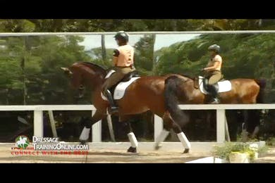 For the more advanced horses, Ms. Later takes us through the trot halt rein back transitions. by Dressage Today Online